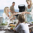 Family Having Barbecue — Stock Photo #33830915