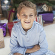 Stock Photo: Boy at Christmas