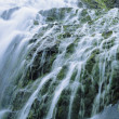 Stockfoto: Cascade Waterfall