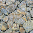 Moss Covered Rocks — Stock Photo #33834955