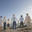 Family Holding Hands — Stock Photo #33836289