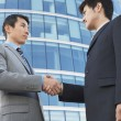 Businessmen Shaking Hands — Stock Photo #33838773