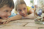 Boy and girl looking at shells in jar — Stock Photo