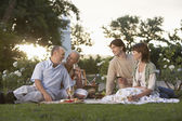 Couples Enjoying an Afternoon — Stock Photo