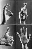Four hands gesturing — Stockfoto