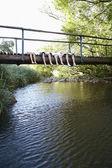 Ahşap köprüye yalan gençler — Stok fotoğraf