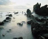 Rocks on Coastline Shrouded in Fog — Stock Photo