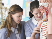School Students in Biology Class — Stock Photo