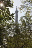 Eiffel Tower Seen Through Trees — Stock Photo