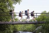 Four teenagers crossing  bridge — Stock Photo