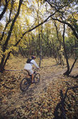 Biker riding on forest trail — Stock Photo