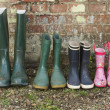 Rubber Boots — Stock Photo #33840237