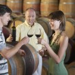 Winemaker Pouring Glass of Wine — Stock Photo #33841191