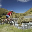 Stock Photo: Cyclist riding