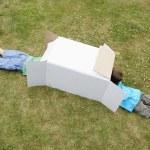 Boys playing in cardboard box — Stock Photo #33844725