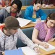 Students in lecture room — Stock Photo #33845725