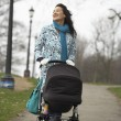 Mother with Stroller — Stock Photo #33846429