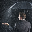 Businessman sticking hand out from under umbrella — Stock Photo