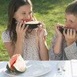 Kids Eating Watermelon at Family Picnic — Stock Photo #33849477