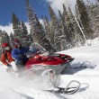 Couple driving snowmobile — Stock Photo #33849489