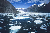 Gelo flutuando na água, na baía de — Fotografia Stock