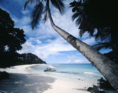 Motorboat on Tropical Beach — Foto Stock