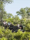 Tourists on safari — Stock Photo