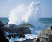 Ocean Waves Breaking on a Rocky Shore — Stock Photo