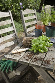 Materials for Potting Plants — Stock Photo