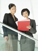 Business colleagues reviewing documents — Stock Photo