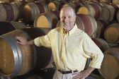 Winemaker with Wine Casks — Stock Photo