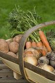野菜のバスケット — ストック写真