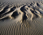 Patterns in the Sand — Stock Photo