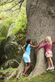 Girls Hugging  Tree — Stock Photo