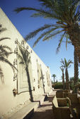 Building exterior with palm trees — Stock Photo