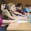 Students in lecture room — Stock Photo #33850137