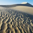 Patterns in Sand — Stock Photo #33850807