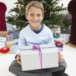Boy holding gift — Stock Photo #33851315