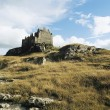 Castle on Hill — Stock Photo