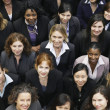 Group of business women — Stock Photo #33852403