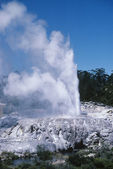 Spouting geyser — Stock Photo
