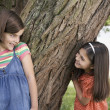 Girls Playing Hide-and-Seek — Stock Photo #33865817