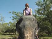 Man riding elephant — Stock Photo