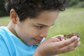 Boy Examining Frog — Stock Photo