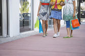 Teenage girls carrying shopping bags — Stock Photo