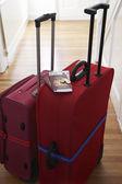 Resväskor stående i hallen — Stockfoto
