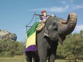 Woman riding on elephant — Stock Photo