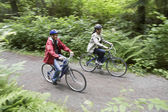 People biking in forest, — Stock Photo