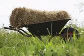 Hay bale on wheelbarrow in field — Stock Photo