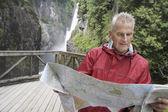 Senior man reading map — Stock Photo
